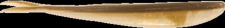 Lunker City Fin-S Fish 17,5cm Arkansas Shiner - 5pack